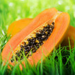 Juicy fresh yellow papaya on green grass — Stock Photo #68217369