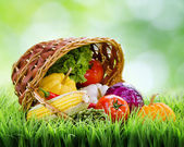 Fresh vegetables falling out of an inverted basket on green gras — Stock Photo