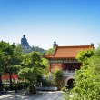 Courtyard of the Po Lin Monastery and the Tian Tan Buddha in the — Stock Photo #68248425