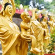 Golden Buddha statues along the stairs leading to the Ten Thousa — Stock Photo #69093781