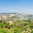 View of the valley of agricultural lands and Da Lat city (Dalat) — Stock Photo #70567109