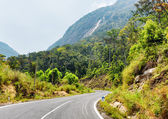 Beautiful road on the Langbian Plateau to Da Lat city (Dalat) in — Stock Photo