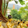Golden Buddha statues on background of a red pagoda and landscap — Stock Photo #70629833