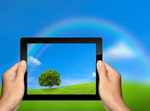 Capture the nature landscape with tablet computer — Stock Photo