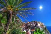 Manarola — Stock Photo