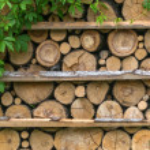 Firewoods — Stock Photo #74406645