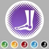 X-ray foot web button — Stock Vector