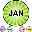 January web button — Stock Vector #64132371