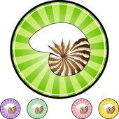 Seashell web icon — Stock Vector