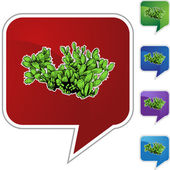 Cactus web icon — Stockvector