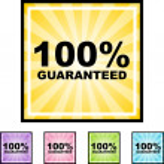 100 percent Guaranteed — Stock Vector #64161631