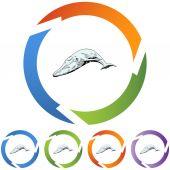 Whale web  button — Cтоковый вектор