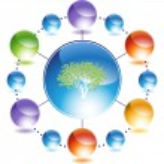 Money tree web icon — Stock Vector #64175239