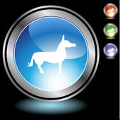 Donkey Icon Set — Stock Vector