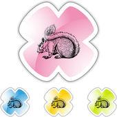Tasto di web di scoiattolo — Vettoriale Stock
