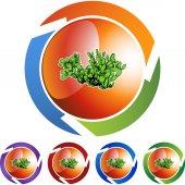 Cactus web icon — Stock Vector