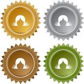 Hair Extensions web button — Stock Vector