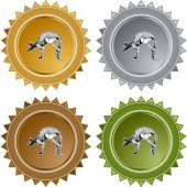 Kangaroo icon button — Stock Vector