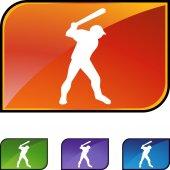 Baseball web button — Stock Vector