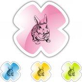 Rabbit web button — Stock Vector