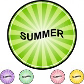 Summer web button — Stock Vector