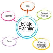 Estate Planning Chart — Stock Vector