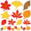 Autumn leaves. torn paper icons. — Stock Vector #52633833