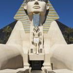 Replica of Great Sphinx in front of Luxor Hotel in Las Vegas — Stock Photo #63066193