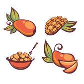 Fresh mellow mango, vector illustration — Stock Vector