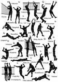 Volejbal hráči silueta — Stock vektor