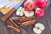 Apples and cinnamon — Stock Photo