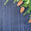 Fir tree branch with fir cone — Stock Photo #56641213