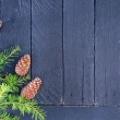 Fir tree branch with fir cone — Stock Photo #56641263