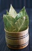 Laurel leaves — Stock Photo