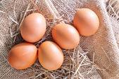Råa ägg — Stockfoto