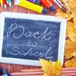 Chalkboard, school supplies and autumn leaves — Stock Photo #57091099