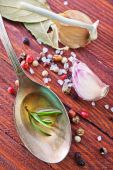 Aroma spices and olive oil — Stock Photo