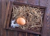 Raw chicken egg — Stock Photo
