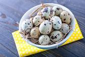 Quail eggs in the bowl — Stockfoto