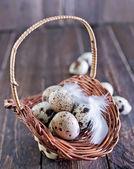 Raw quail eggs — Stock Photo