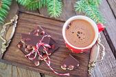 Chocolate and cocoa — Stock Photo