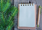 Notebook for note and fir branch — Stockfoto