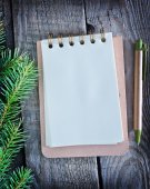 Notebook for note and fir branch — Stock Photo