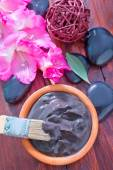 Clay for spa and brush — Stock Photo