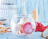 Sea shells in glass bowl — Stock Photo