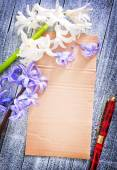 Spring flowers and piece of paper — Stock Photo