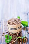 Coriander seeds in bowl — Stock Photo