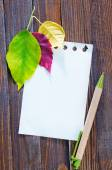 Dry leaves and note — Stock Photo