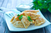 Fried dumplings on the white plate — Stock Photo