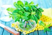 Fresh mint in glass — Stock Photo